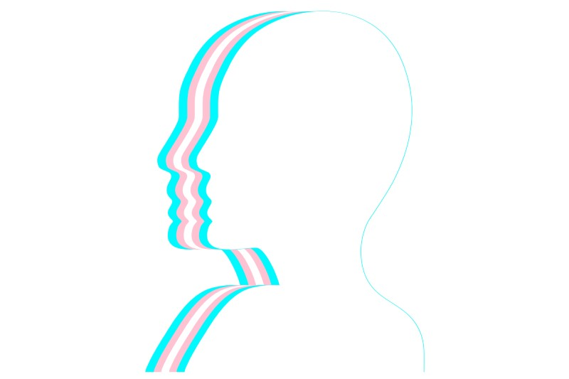 line drawing of head in trans flag colours